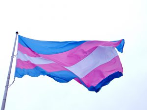 A flag representing the trans community. (Image courtesy of Flickr user torbakhopper.)