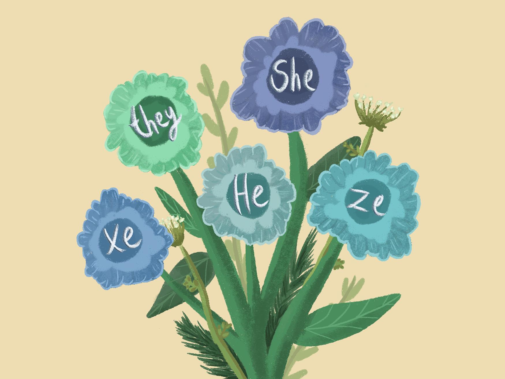 Let's Talk Pronouns